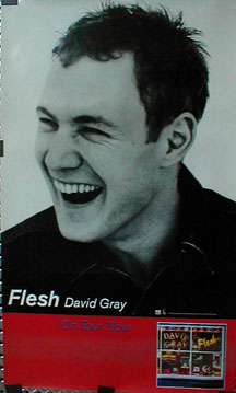 Gray,David Flesh Poster PO